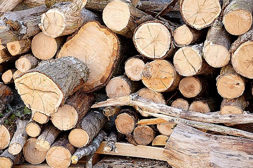 Market Conditions and Lumber Prices